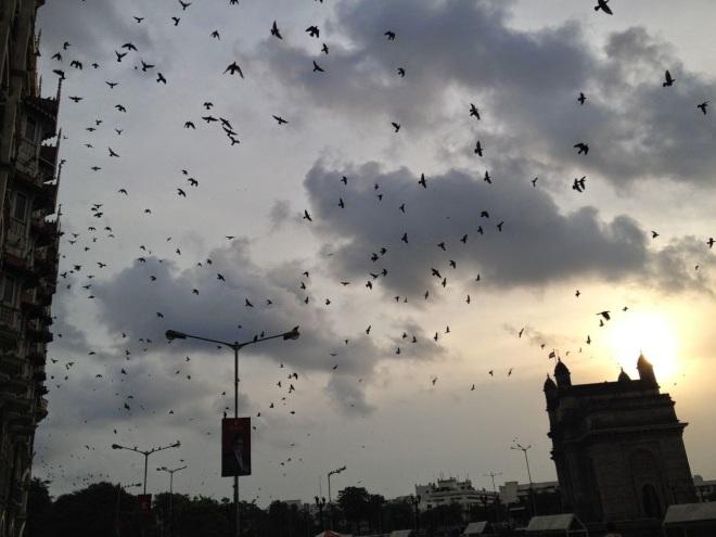 في سماء مومباي - المصدر: الانترنت